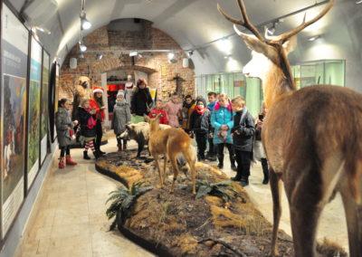 Dzieci patrzące na wystawę zwierząt