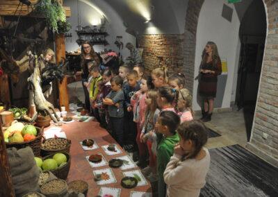 Grupa dzieci patrzy na rośliny